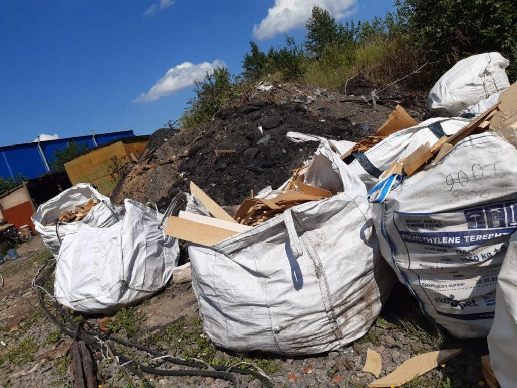 Петербург включили в десятку регионов-лидеров экологического рейтинга