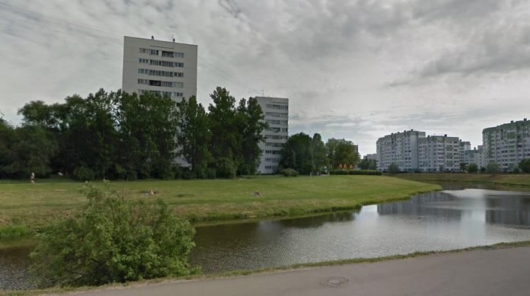 МЧС предупреждает петербуржцев о сильном ветре в пятницу