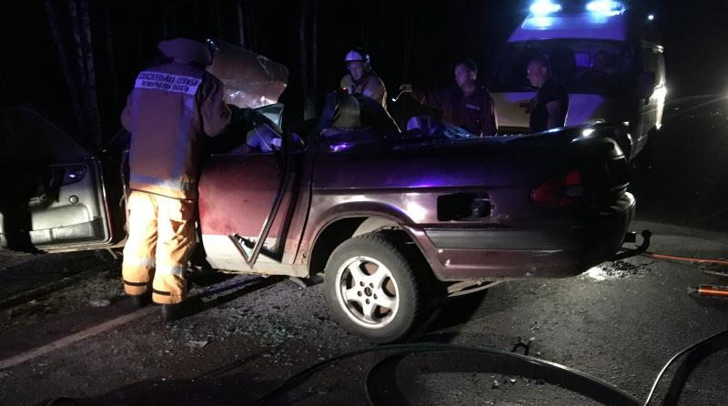 В Янино-1 ночью пожарные тушили горящий автомобиль
