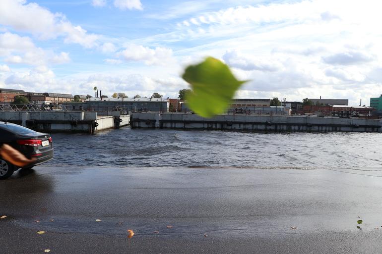 В Петербурге в четверг будут сильный ветер и дождь