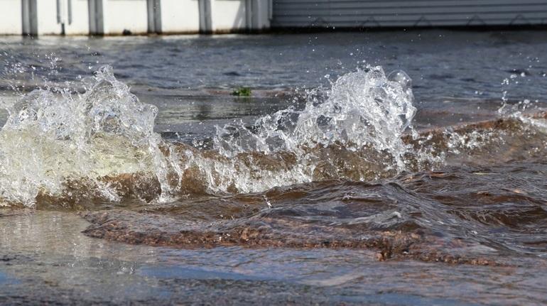 В Ленобласти спасатели объявили штормовое предупреждение