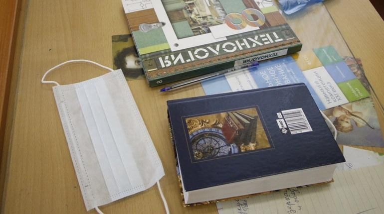 Школы Ленобласти открывают прием заявлений на дистанционную учебу