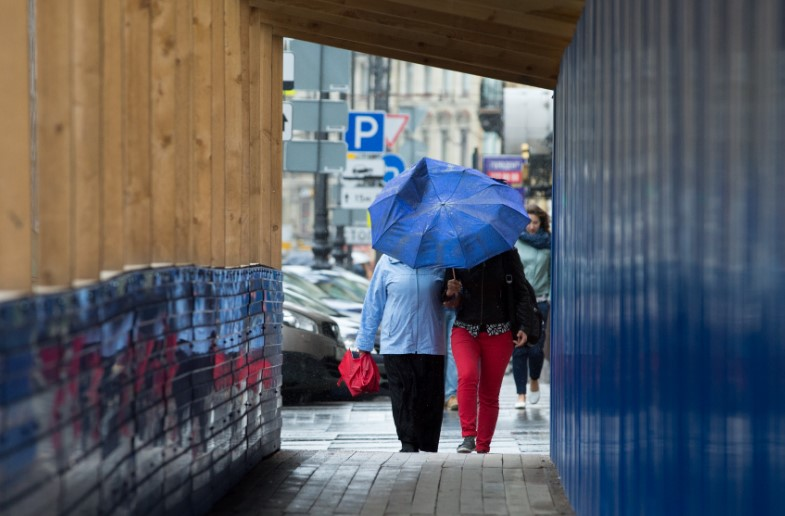 МЧС предупредило петербуржцев о сильном ветре 20 ноября