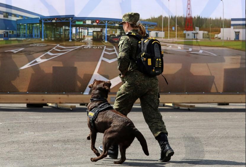 Псковские таможенники раскрыли схему незаконного ввоза иномарок