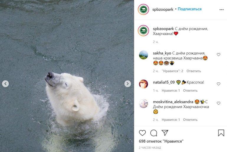 В Ленинградском зоопарке отмечают день рождения Хаарчааны