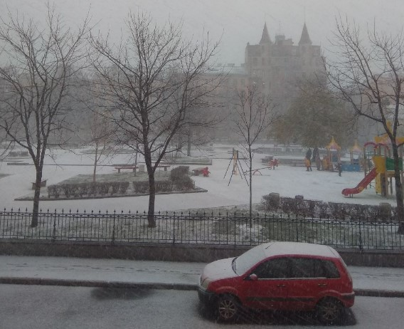 На Петербург обрушился внезапный ноябрьский снег