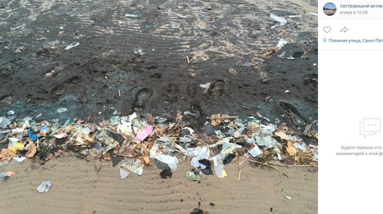 Эколог пояснила, откуда на пляжах Сестрорецка появляется мусор, маски и прокладки