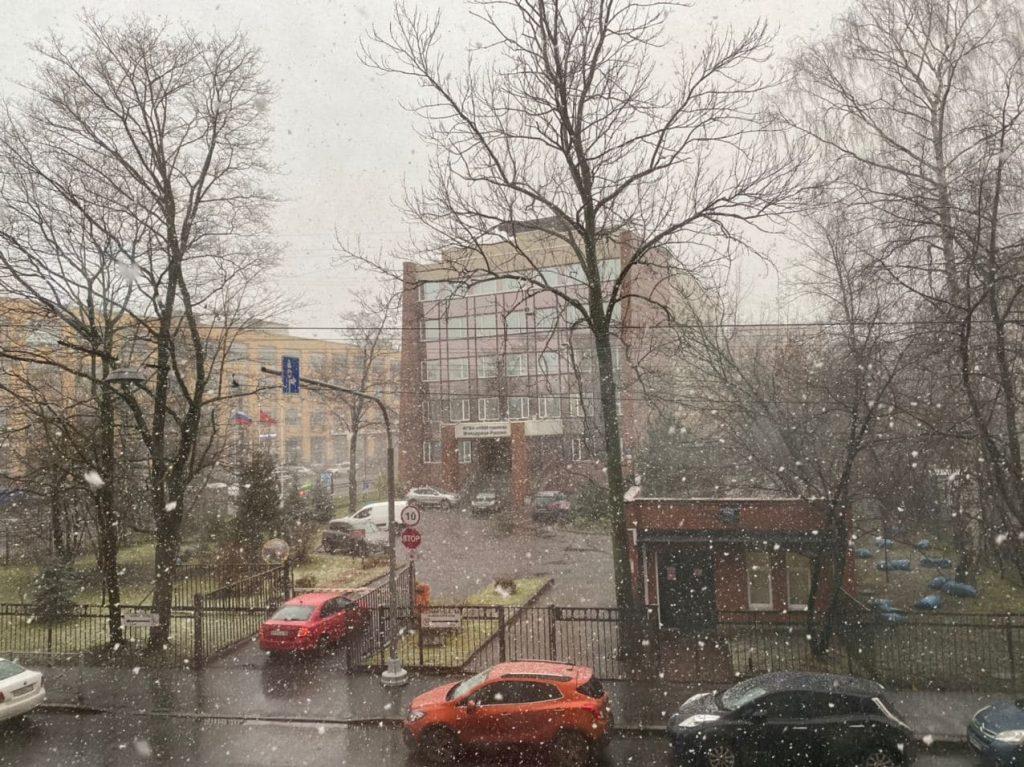 Петербург засыпало снегом
