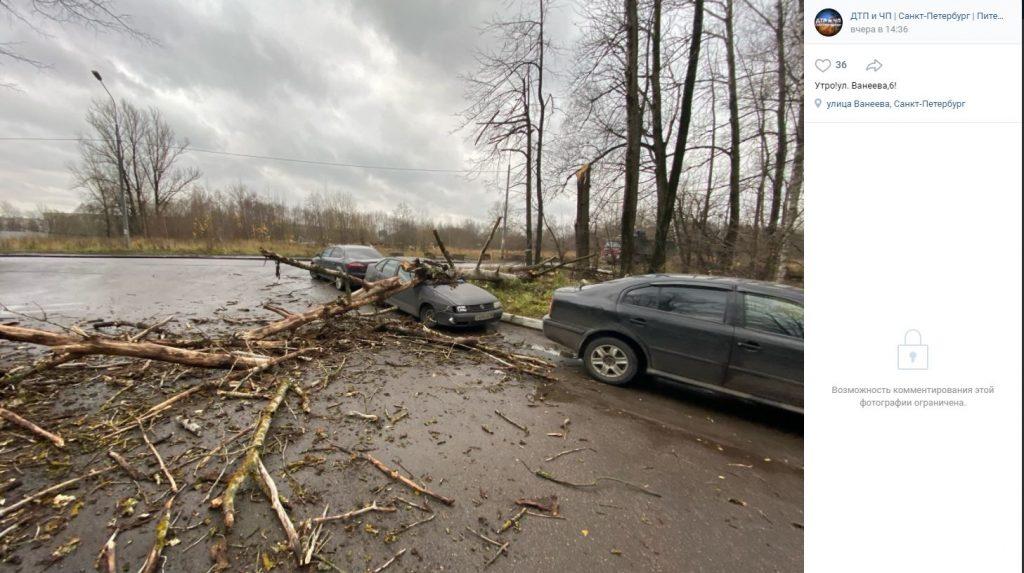 Шторм вновь показал «готовность» петербургских дорожников к борьбе с непогодой