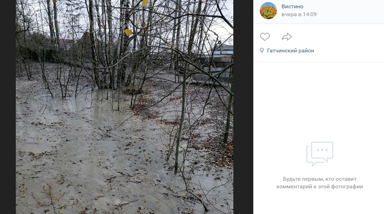 Жители Вистино заметили разлив бетона в лесном массиве