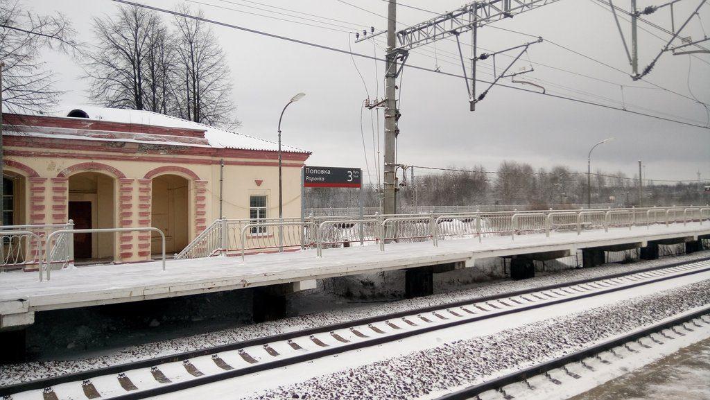 Задержан подозреваемый в краже у спящего на станции Поповка в Ленобласти