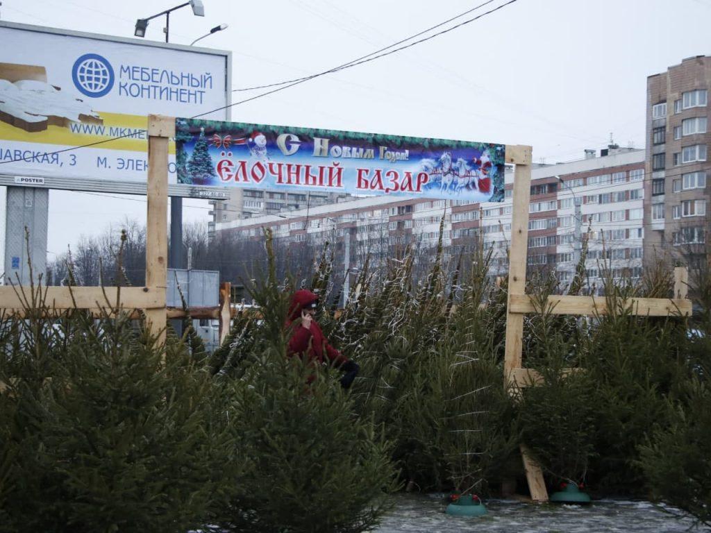 Елочные базары оккупировали Петербург