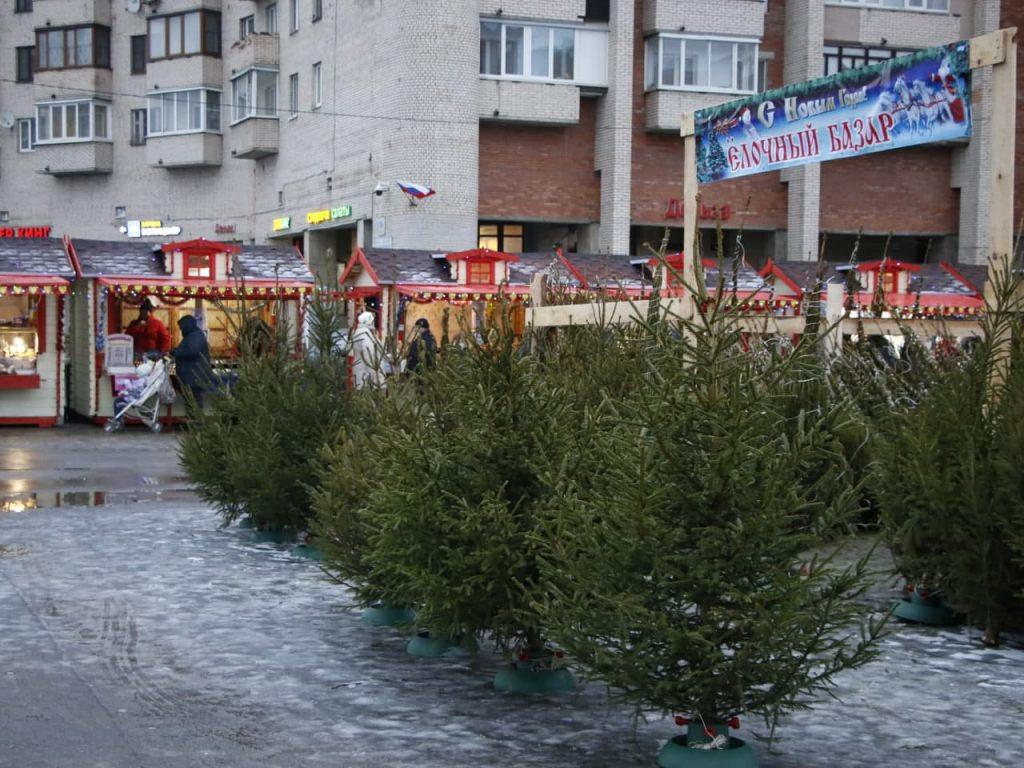 С улиц Петербурга убрали 36 незаконных ёлочных базаров