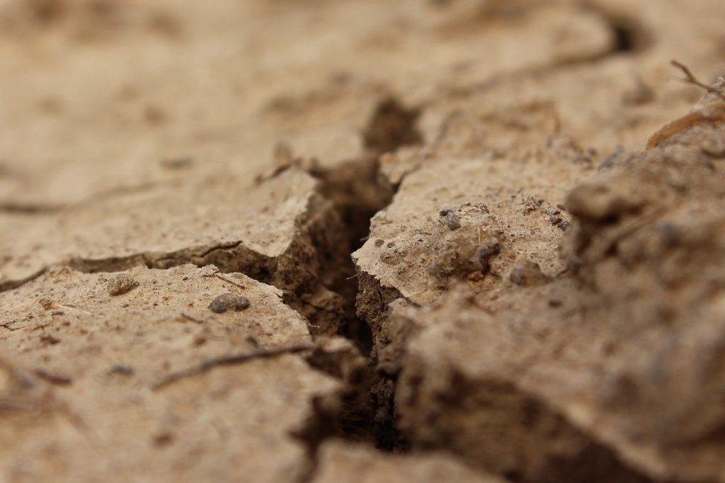 Российские ученые создали георадар для глубокого анализа почвы