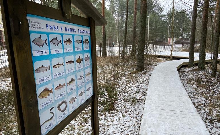 Терапевтический сад и экотропа появились в Волховском районе