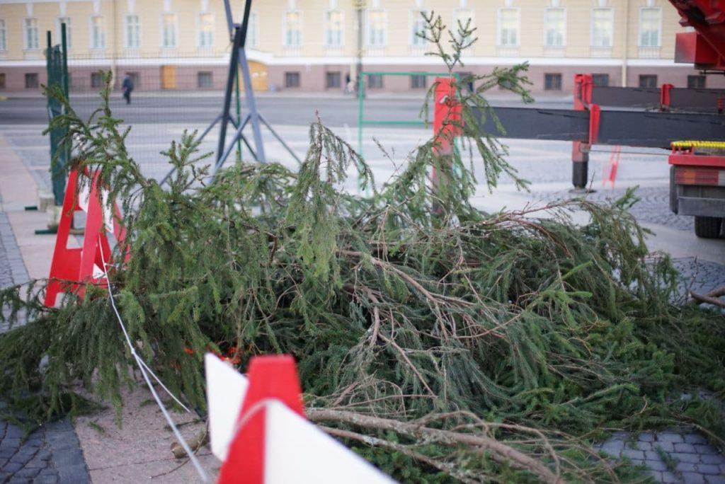 Фоторепортаж Мойки78: к елке на Дворцовой приделали отломившиеся ветки