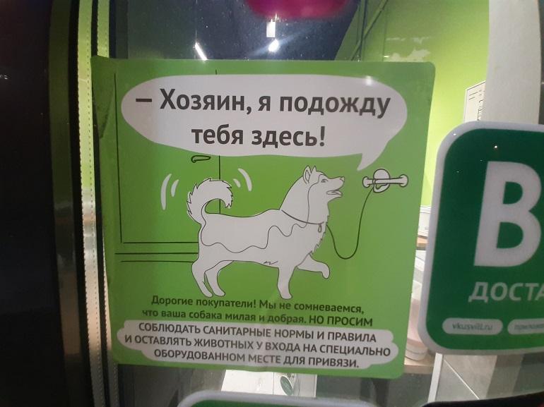 Петербургские магазины «парковками» для собак провоцируют владельцев нарушать закон