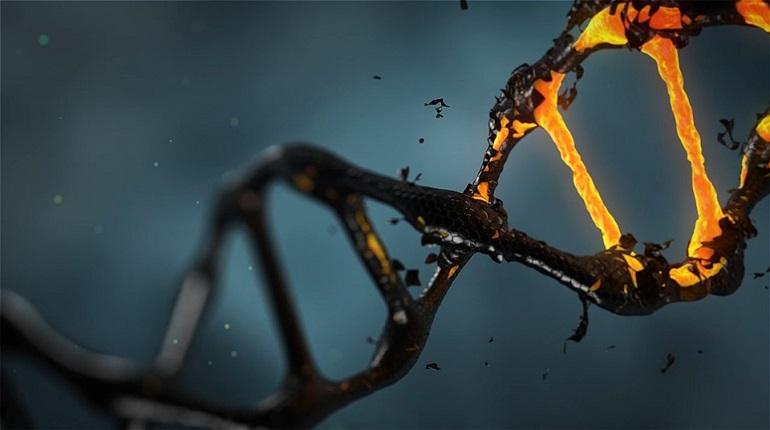 Ученые установили общие гены с древними океаническими существами