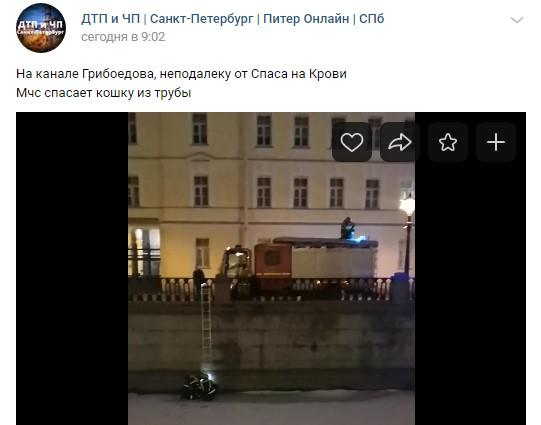 У Спаса на Крови петербургские пожарные спасли жизнь коту, застрявшему в трубе канала Грибоедова