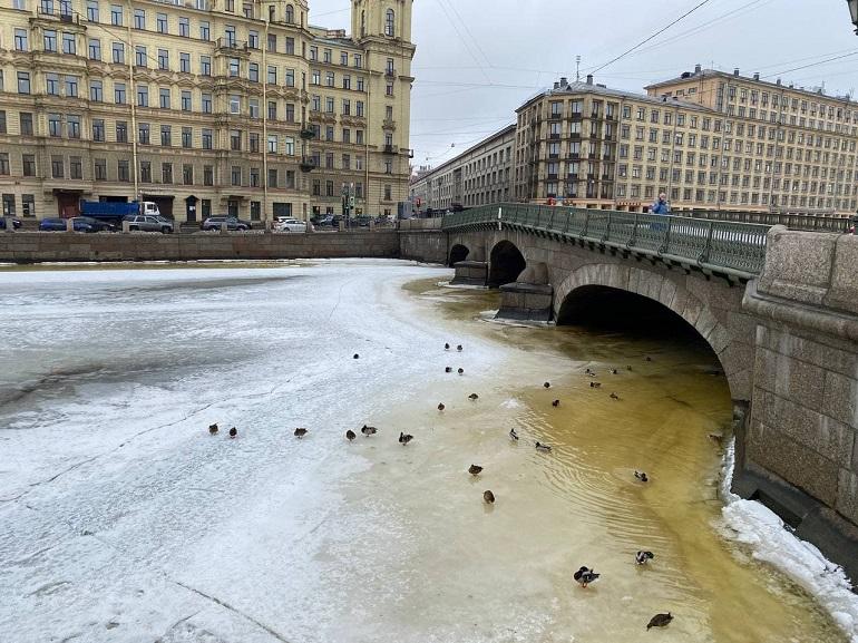 Этюд в желтых тонах: водоемы Петербурга окрасились в подозрительный цвет