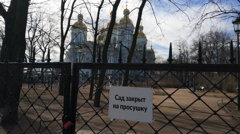 Сады и парки Петербурга закроют на просушку в среду