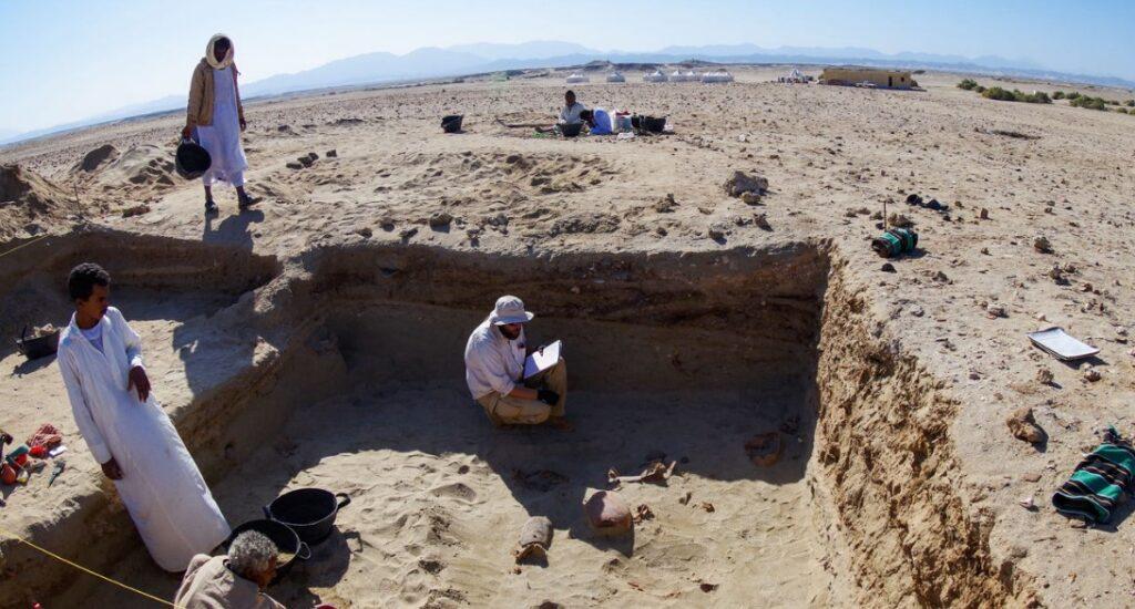 Археологи нашли древнейшее кладбище домашних животных