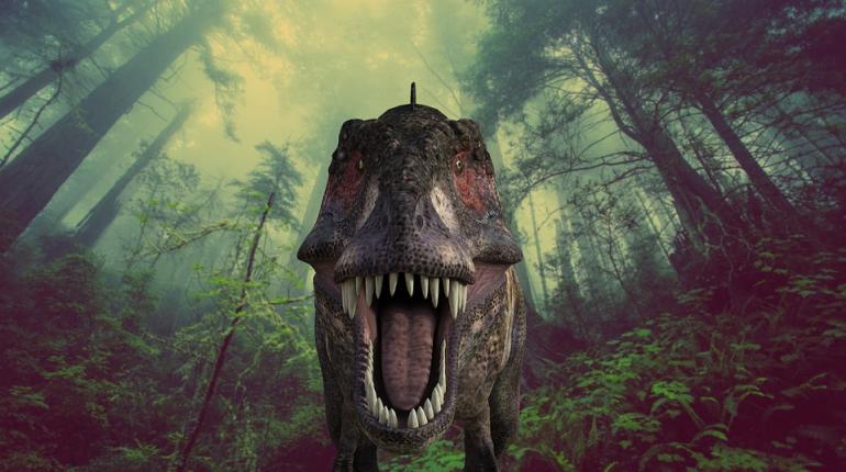 Ученые считают, что тираннозавры могли охотиться стаями