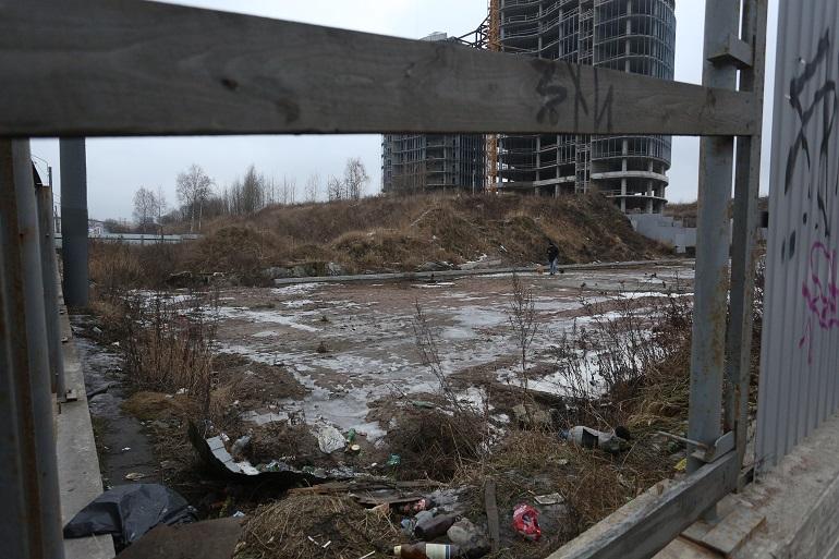 Золоотвал в Невском районе Петербурга хотят ликвидировать, а Зольную улицу — переименовать