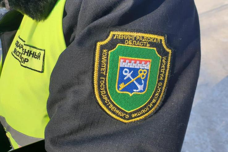 В Ленобласти на треть увеличился объем работы экологического надзора