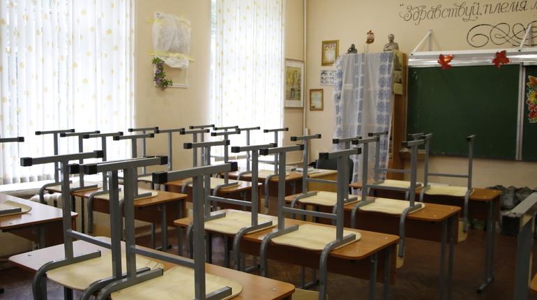 Школьникам Ленобласти продлили каникулы из-за распространения коронавируса