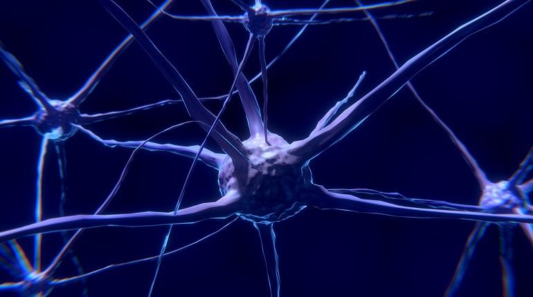 Ученые создали искусственную нервную систему, способную реагировать на внешние раздражители