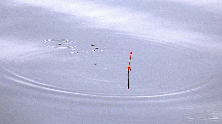 Рыбакам Ленобласти посоветовали пять озёр для удачной рыбалки