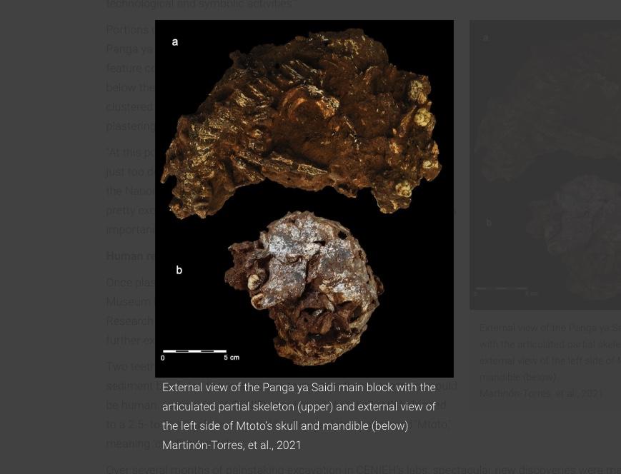 В Кении обнаружена древнейшая из ныне известных могила человека