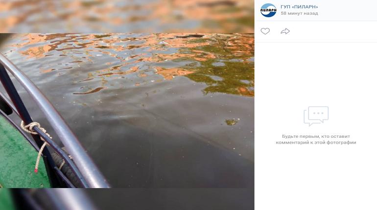 В акватории Фонтанки произошел разлив нефти