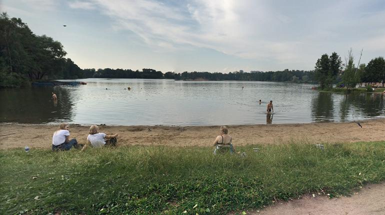 Из-за аномальной жары в водоемах Петербурга выросло количество водорослей с неприятным запахом