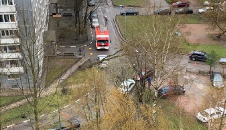 На проспекте Художников на машину упало дерево
