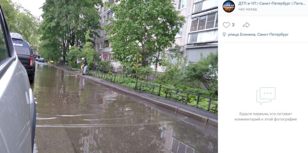 Предприимчивый житель Выборгского района постирал ковер в образовавшейся после дождя луже