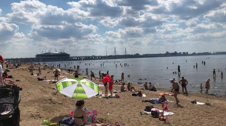 В Петербурге снова не признали пригодным для купания ни один пляж