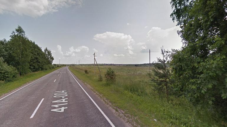 Пропавшую женщину нашли мертвой на обочине дороги в Ленобласти