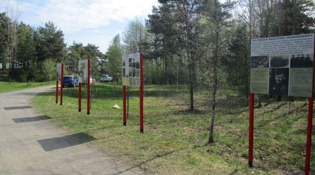 В Песочинском и Сестрорецком лесничествах до сентября отремонтируют дороги