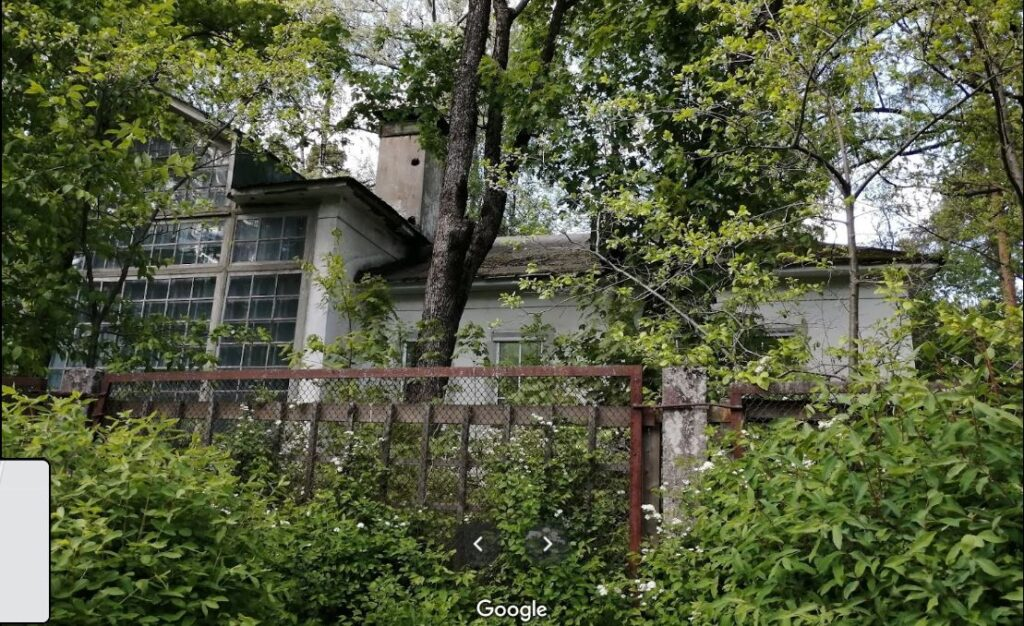 С собственника Янино взыскали более 35 млн рублей за заросший сорняками участок