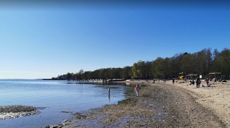 Состояние пляжа «Морские Дубки» не дотягивает до пятерки