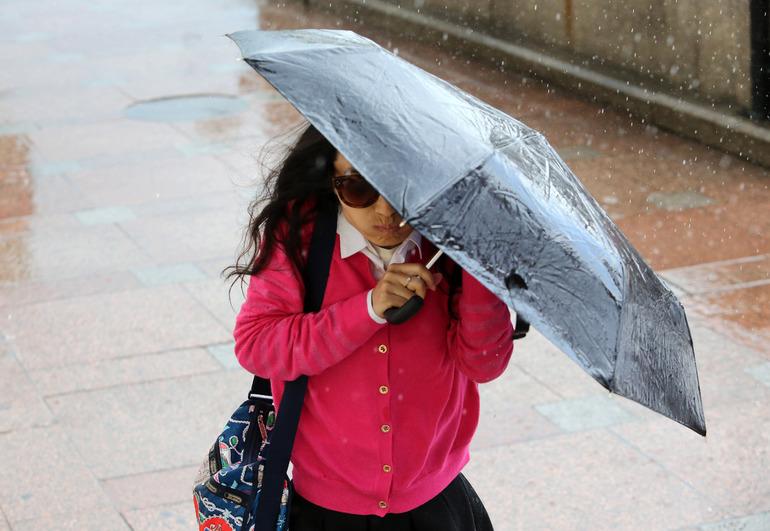 МЧС предупредило петербуржцев о грозах и усиленном ветре во вторник