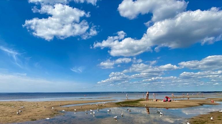 Независимая инспекция: пляж «Сестрорецкий» находится в удовлетворительном состоянии