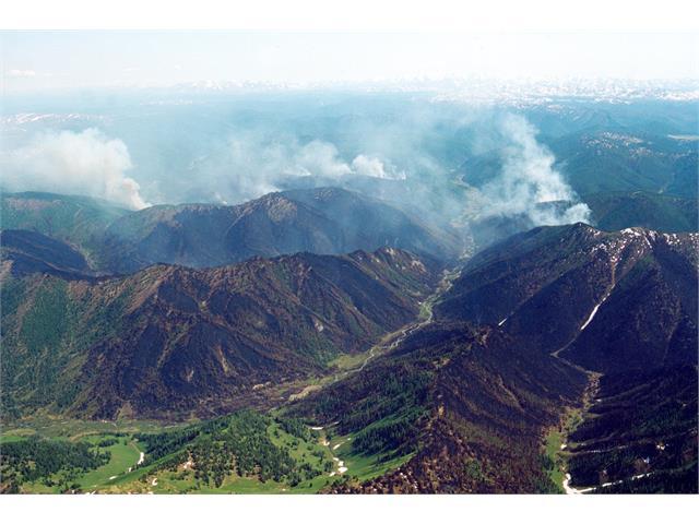 В России тушат более 785 тысяч гектаров лесных пожаров