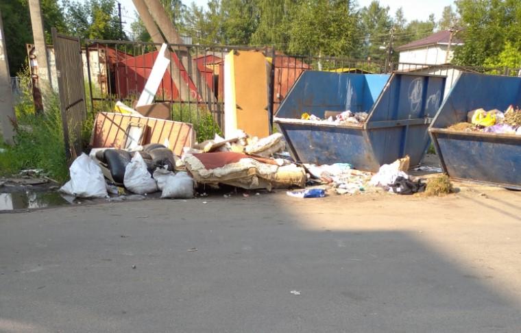Жители Всеволожска пожаловались на заваленные мусором контейнерные площадки