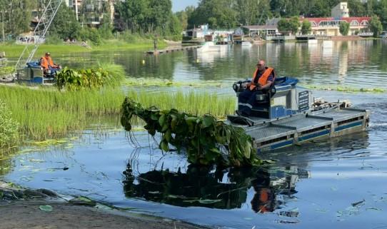 Среднее Суздальское озеро очистят от водорослей