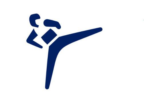 Петербуржец завоевал бронзовую медаль по тхэквондо на Олимпиаде