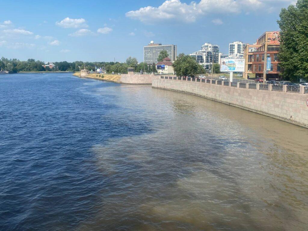 Последствиями загрязнения реки Карповки заинтересовался Росприроднадзор