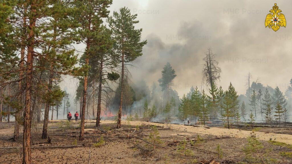 Площадь лесных пожаров в Якутии превысила 1,5 млн гектаров